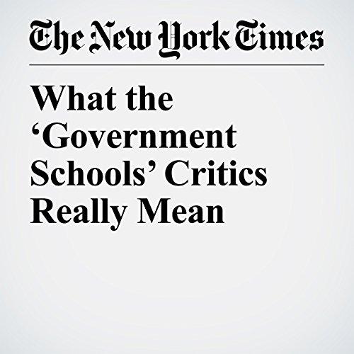 What the 'Government Schools' Critics Really Mean copertina