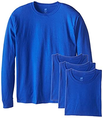 Hanes Men's 4 Pack Long Sleeve Comfortsoft T-Shirt, Deep Royal, Large