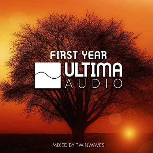 Various Artists / Twinwaves