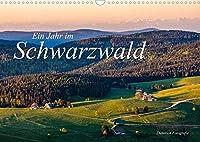 Ein Jahr im Schwarzwald (Wandkalender 2022 DIN A3 quer): Der Schwarzwald uebers Jahr. (Monatskalender, 14 Seiten )