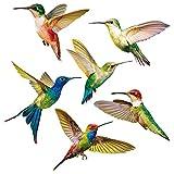 YGHH 6 Pezzi Adesivi per Finestre Uccelli, Decalcomanie per Vetri per Vetri, Adesivi Anticollisione, semplicità Modello Colibrì PVC Adesivi per Vetri Anti-Collisione per Finestra, Soggiorno (6 Stile)