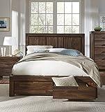 Modus Furniture Meadow Solid Wood Footboard Storage Bed, King, Brick Brown