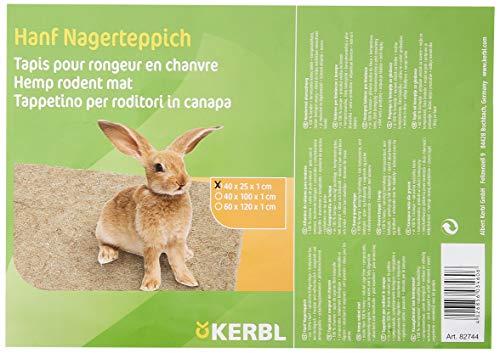 KERBL Tapis en Chanvre pour Rongeur 40 x 25 cm