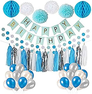 Frozen Theme White Blue Party Decorations girls Birthday Party Supplies, balloons, Pom Poms Flowers, birthday banner, pape...
