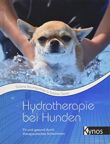 Hydrotherapie bei Hunden: Fit und gesund durch therapeutisches Schwimmen