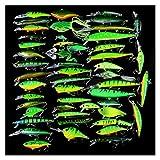 GuanRen 50pcs / Lot Set de señuelo de la Pesca Mezclado 50 pez Pescado Cebo Minnow/Popper/VIB/CANK Lure y CICADA CAIT
