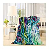 SIGOUYI Lightweight Fleece Blankets Reversible Throw Cozy Plush Microfiber All-Season Blanket for Bed/Couch - Throw 40x50 Inch, Colorful Ink Peacock Feathers