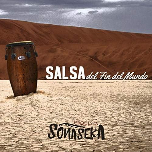 Sonaseka