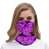 PotteLove Purple Phlox Spring Flowers Unisex Multifunctional Bandana Neck Gaiter Tube Headwear headkerchief, Motorcycle Face Mask Bandana Headband for Women Men Face Scarf