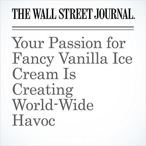 Your Passion for Fancy Vanilla Ice Cream Is Creating World-Wide Havoc copertina