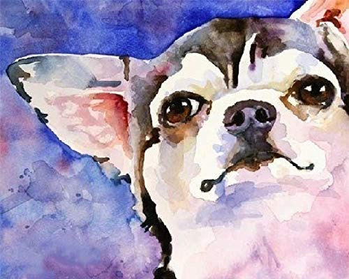DIY Paint by Numbers Kits Watercolor Dog Chihuahua Digital Oil Painting for Adults Kids Birthday Wedding New Accommodation Decorations Gifts