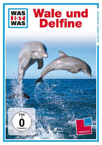 was ist was – wale und delphine