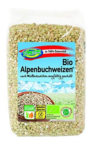 Trigo de sarraceno ecológico sin gluten 2,4kg Bio biológic