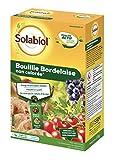 Solabiol SOBOU11 Bouillie Bordelaise 1,1 kg - Non Colorée - Traitement Mildiou, Tavelure Cloque | Utilisable en Agriculture Biologique