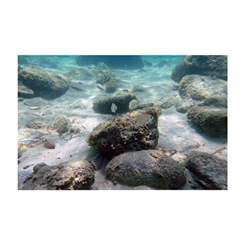 Libaoge Aquarium-Hintergrund, 3D-Unterwasserwelt, Vinyl, selbstklebend, 24