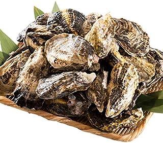 港ダイニングしおそう 牡蠣缶焼き 3kg(殻付きカキ 約32-42個) 香川県産 一斗缶 軍手 ナイフ付き