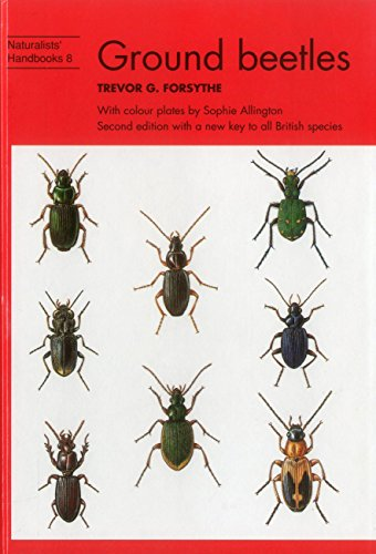 Ground Beetles (Naturalists' Handbooks, Band 8)