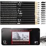 ATARSM Juego de lápices de Arte, Juego de lápices de bocetos de Dibujo 2H-8B, 12 Piezas, lápices de Dibujo Profesionales, lápices de Grafito para Artistas