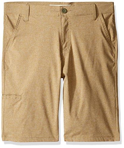 Levi's Boys' Little 511 Slim Fit Lightweight Stretch Shorts, Incense, 2T