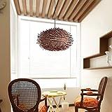 ZZYJYALG Nido sureste de Asia Rattan Lámpara restaurante de pájaro de la lámpara de mimbre rota Sombras de la armadura de la lámpara decorativa del jardín jaula de pájaros de estilo japonés de bambú d