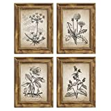 NUOLAN 5x7 Picture Frame-Farmhouse Rustic Brown Wood Pattern Photo Frames for Wall or Desk Display, 4 Packs(NL002-MD5X7-RB-N)