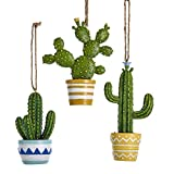 Kurt Adler E0309 Holiday Decorative Cactus in Detailed Designed Pots Hanging Christmas Tree Ornament Set with Twine Rope Hanger (3 Pack)