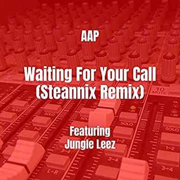 Waiting For Your Call (Steannix Remix)