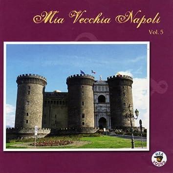 Mia vecchia Napoli, vol. 5
