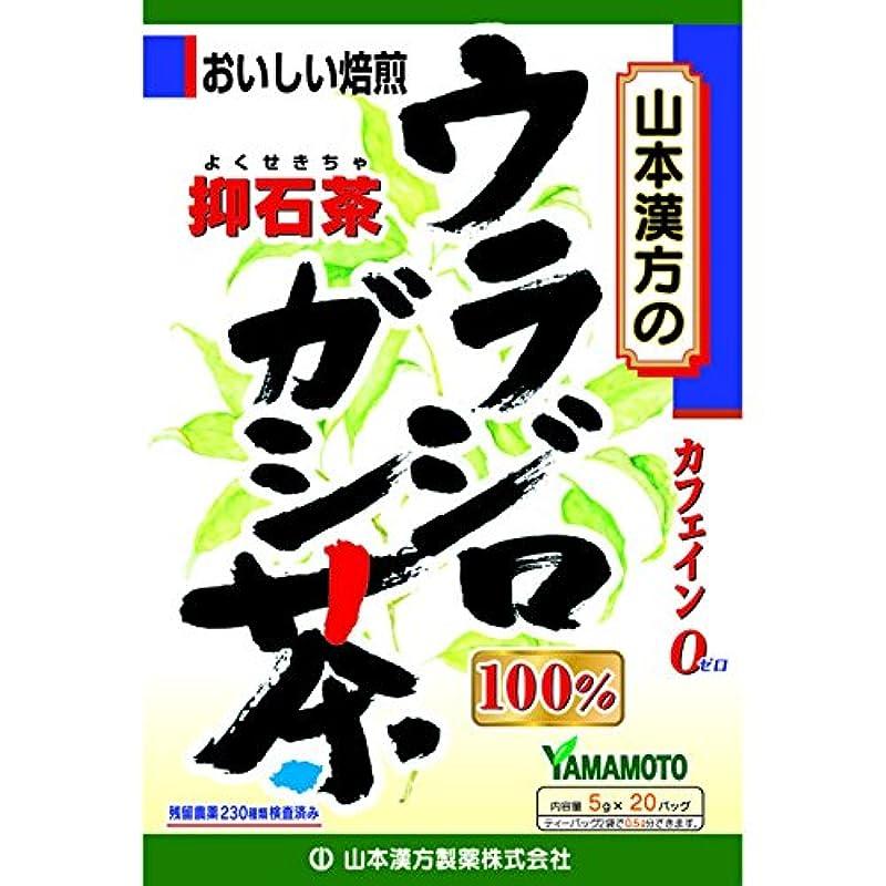 医療の報酬のかける山本漢方 ウラジロガシ茶100% 5g x 20包【2個セット】