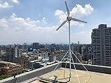 Automaxx Kit generador de turbina de Viento 1200 W 48 V 21 A. Controlador de Carga MPPT Incluido (Amplificador, voltios y...