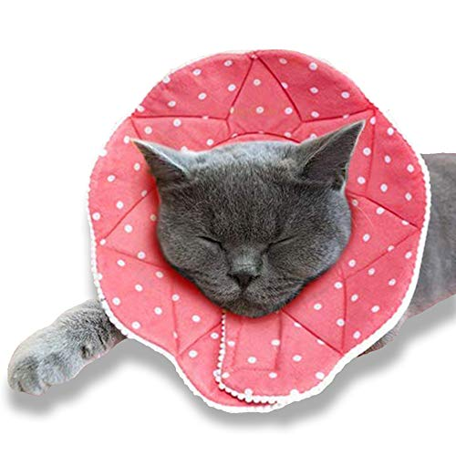 SunGrow Cat Recovery Cone, Soft Comfortable Neck Pillow, for Speedy Neuter or After Surgery, No More...