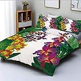 Juego de Funda nórdica, Flor Kahili Ginger Bambú y orquídea Acentos Tropicales de Colores Vivos Juego de Cama Decorativo de 3 Piezas con 2 Fundas de Almohada, Amarillo púrpura y Verde Oscuro, BES