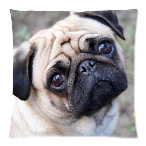 violetpos funda de cojín decoración Charming Carlino perro de sofá Ornamentales almohada fundas cojín fundas de coche & de ropa de cama Ropa de cama almohada cojín, multicolor, 45 x 45 cm