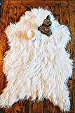 Delectable Garden Soft White Faux Sheepskin Faux Fur Chair Couch Cover Modern Area Rug Baby Blanket for Bedroom Floor Sofa Living Room Approx: 2 x 3 Feet - White