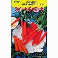 にんじん 種 スイートキャロット 小袋(約4ml)