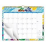 Cabbrix 2020-2021 Academic Year Monthly Wall Calendar, Study Wall Calendar, 15 x 12 Inches, Perfect for Home Schooling Plan