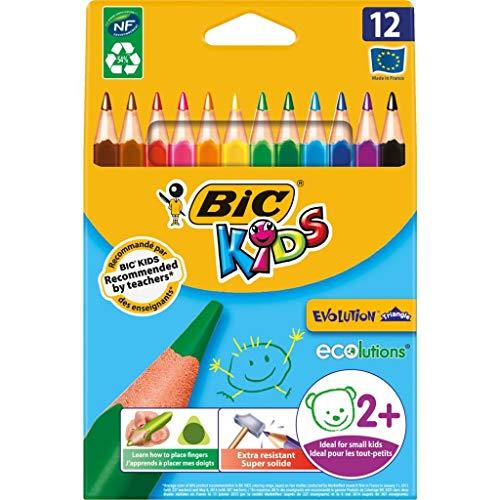 BiC© Buntstiftetui Kids Ecolutions Triangle - 12-farbig sortiert