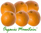 Navel Oranges from Organic Mountain