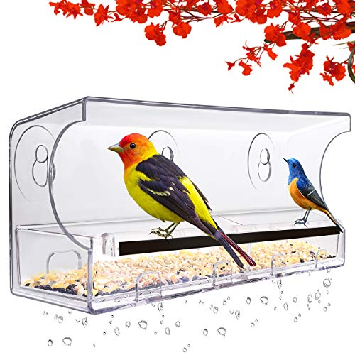 LUJII Window Bird Feeder with 5 Strong Suction Cups, Anti-Shock Anti-Pressure Very Strong, Bird Feeders for Outside, Rounded Corners Very Safe, Removable Tray with Drain Holes, Great Gift (Black)