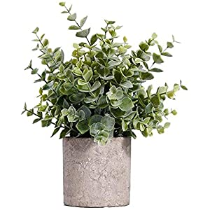 MIAIU Small Potted Artificial Plants Plastic Fake Greenery Topiary Shrubs for Home Office Farmhouse Bathroom Tabletop Indoor Decor