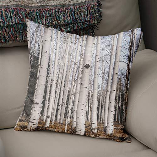 Lplpol Funda de almohada de lona con árboles de abedul y bosque, funda de almohada rústica, de montaña, minimalista, de árboles de Aspen, almohada blanca para sala de estar, 40,6 cm