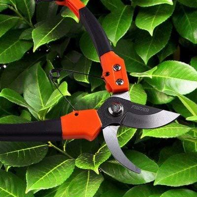 ExcLent Sécateur Sharp Jardinage - Papaya Orange