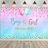Rosa y Azul Revelación Género Decoraciones, Fiesta Bienvenida a Bebé Pancarta Decoración, Banner Sorpresa Género, Fondo de Fotografía Baby Shower, 150 x 210 cm