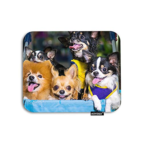 AOYEGO Bulldog Mouse Pad Cute Dogs Chihuahua Dachshund Sitting in Wheelchair Gaming Mousepad Rubber Large Pad Non-Slip for Computer Laptop Office Work Desk 9.5x7.9 Inch