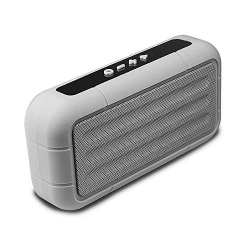 SEEDARY Bocina Altavoz Bluetooth Inalámbrico Portátil, Bocina Sonido Estéreo TWS Radio FM, Llamadas Manos Libres, Altavoz Speaker Compatible con iOS Android iPad Pc, Color Gris