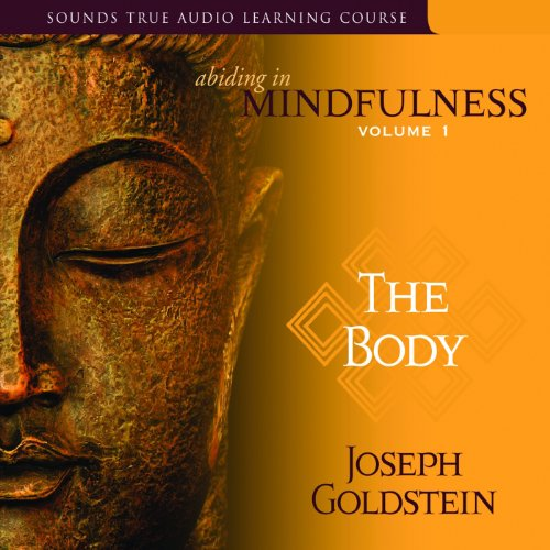 Abiding in Mindfulness, Volume 1 audiobook cover art