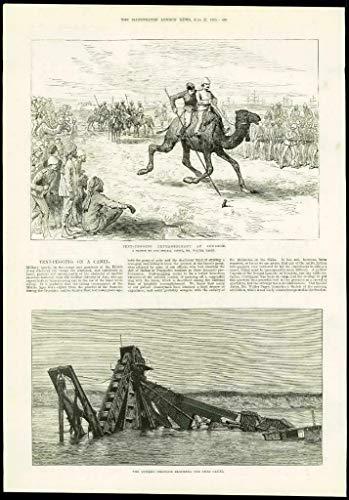 1885 - Africa Sudan Suakin Sport-Zelt-Hering Camels SUEZ Canal Dredger (91)