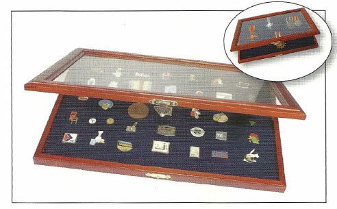 SAFE Pin Case for Display of Disney Pins, Hard Rock Pins and others by SAFE