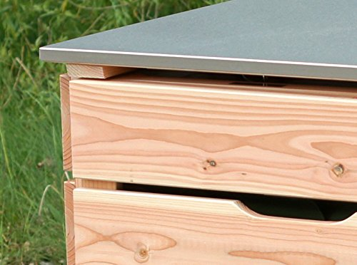 2er Mülltonnenbox 240 L, Holz / Edelstahl – Deckel, Douglasie Natur - 4
