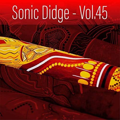 Sonic World Orchestra, Gene Pierson & Sacred Didj